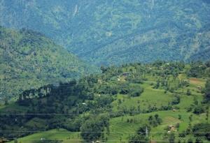 Namchi, Rock Garden, Sikkim, Namchi Sightseeing