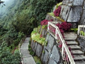 Namchi Rock Garden, Namchi Sightseeing, South Sikkim