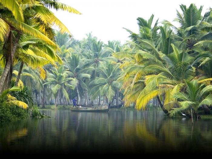 Backwaters, Alleppey, Kelara, Monsoon Travel