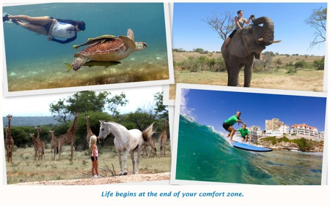 travel, try new things, surfing, snorkeling, elephant safari