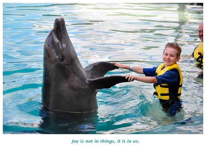 Travel to discover new joy