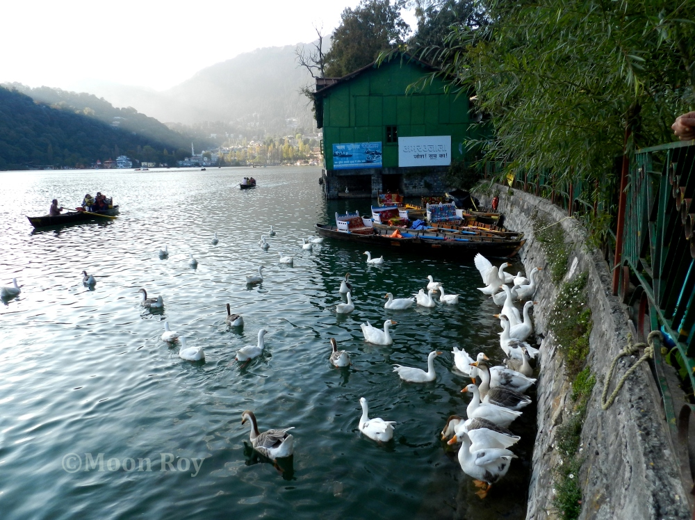 A Memorable Trip to Nainital – The Lake District of India (5/6)