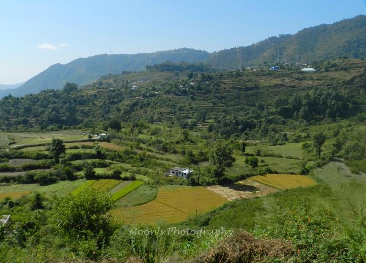 Paragliding site, Bhimtal, Nainital, Uttarakhand, Kumaon