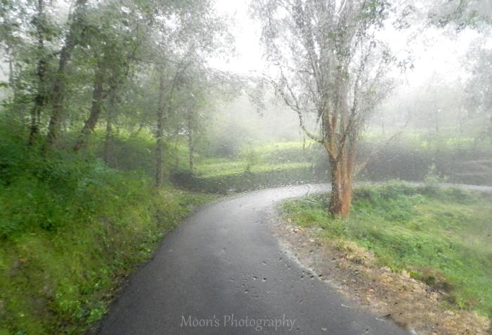 Rain, Ranikhet, Almora, Kumaon, Uttarakhand
