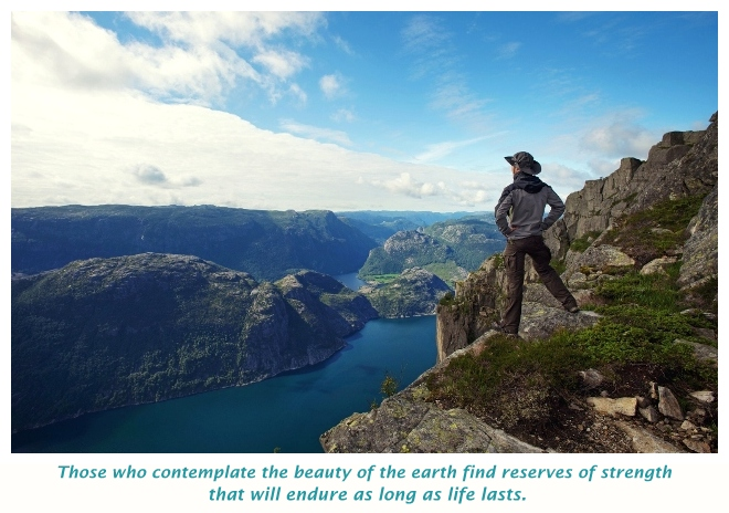 travel and contemplate in Nature