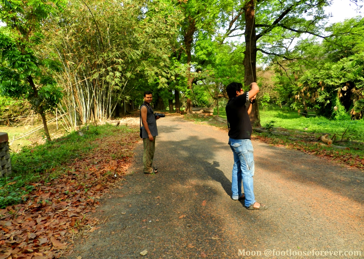 birding, Shibpur Botanical Garden, Indian Botanic Garden