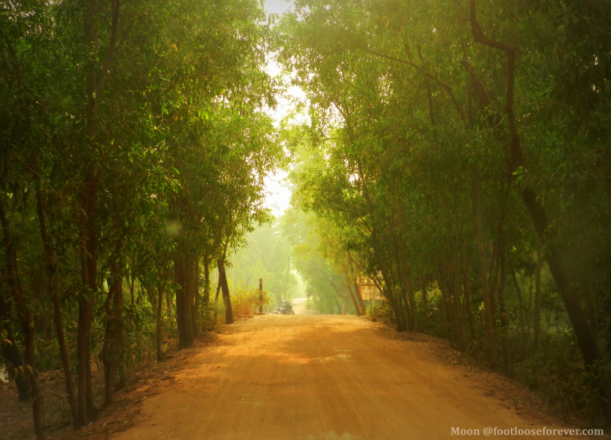 way to prakriti bhavan, shantiniketan, country road