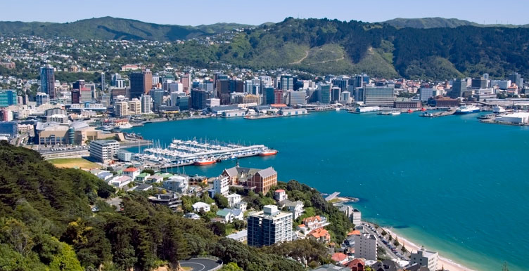 wellington, NZL, ICC Cricket World Cup, 2015