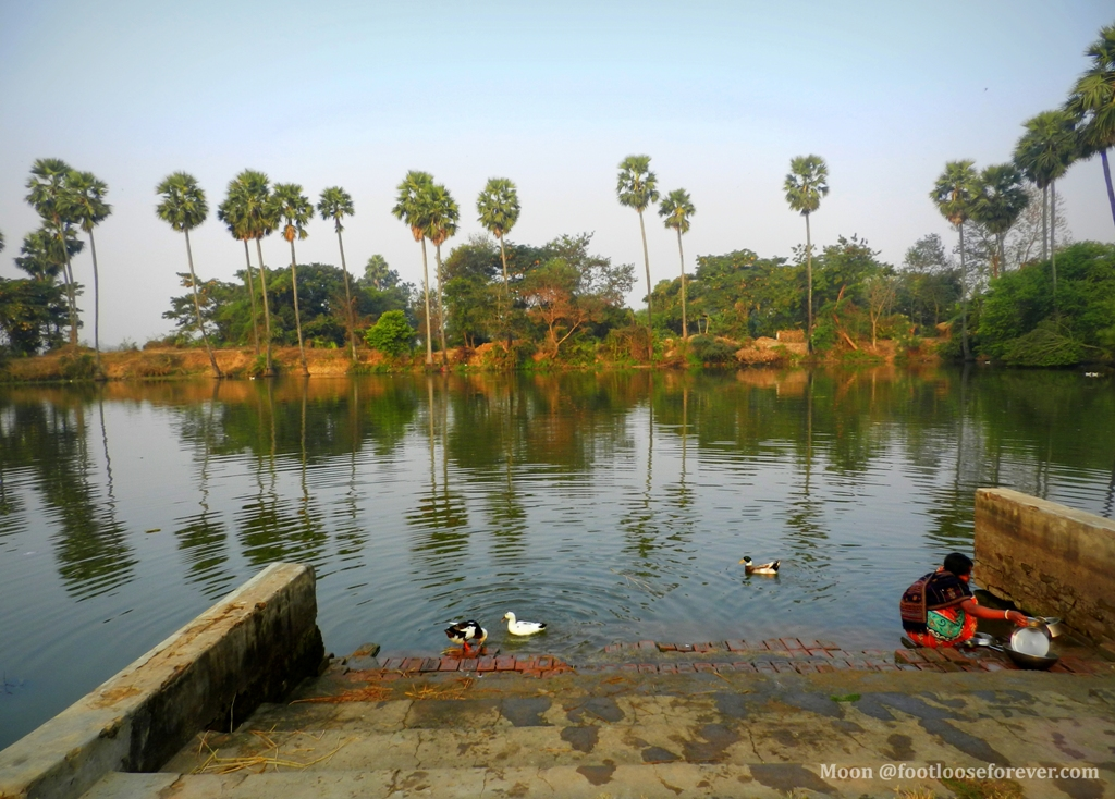 pond, women at pond, shantiniketan, bolpur, rural bengal