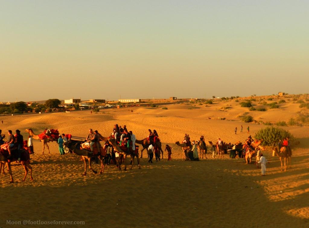 camel ride, thar desert, jaisalmer, rajasthan