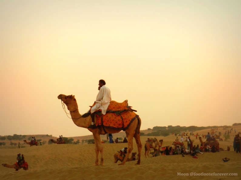 camel rider, thar desert, Jaisalmer, rajasthan