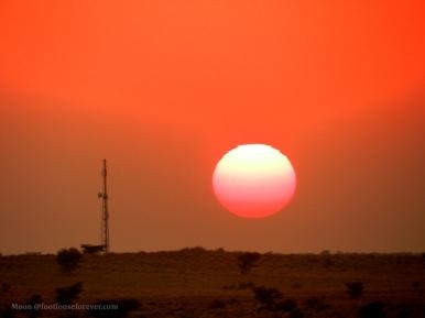 sunset, thar desert, jaisalmer, rajasthan