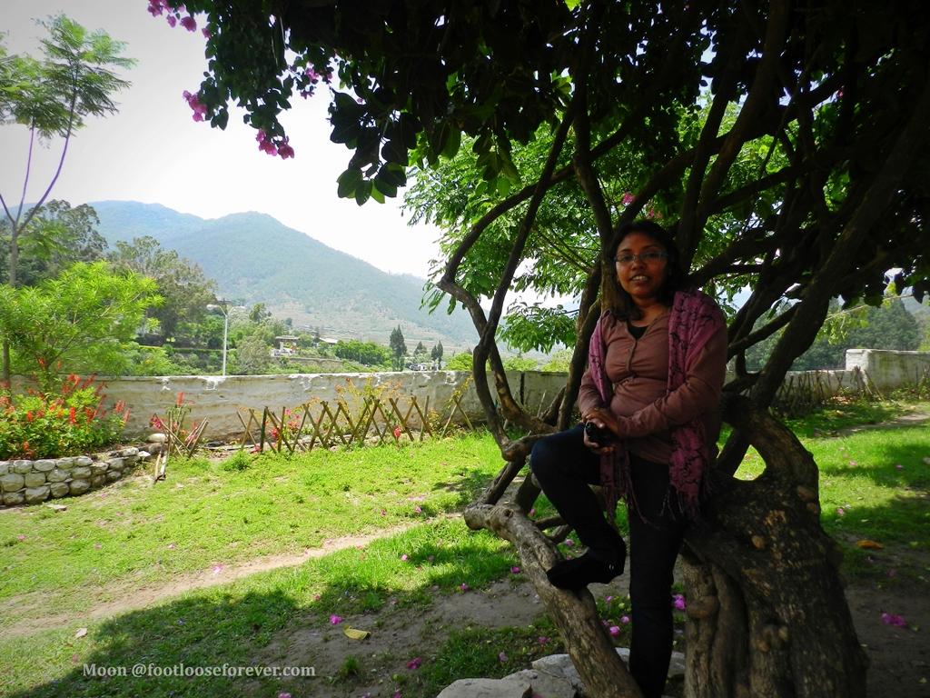 punakha, monastery, garden, bhutan