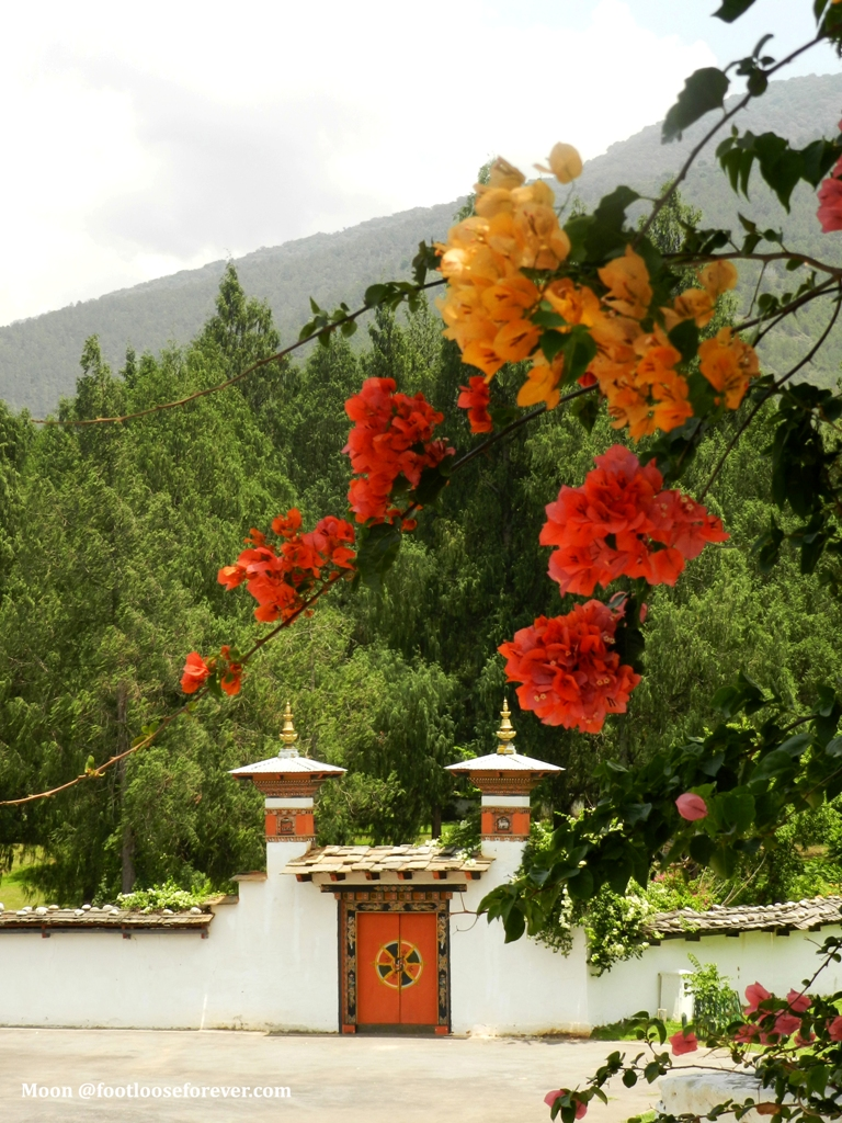 door, doorway, gate, door, doorway, monastery, Punakha, Bhutan