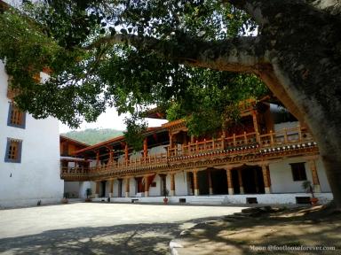 inside punakha dzong