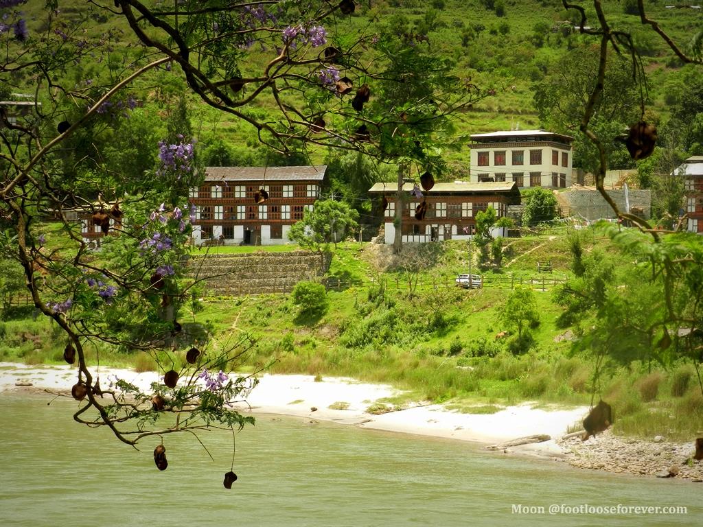 punakha landscape