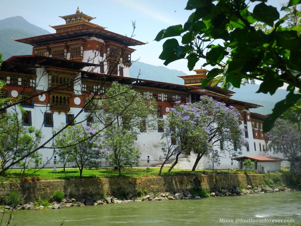 punakha monastery (2)