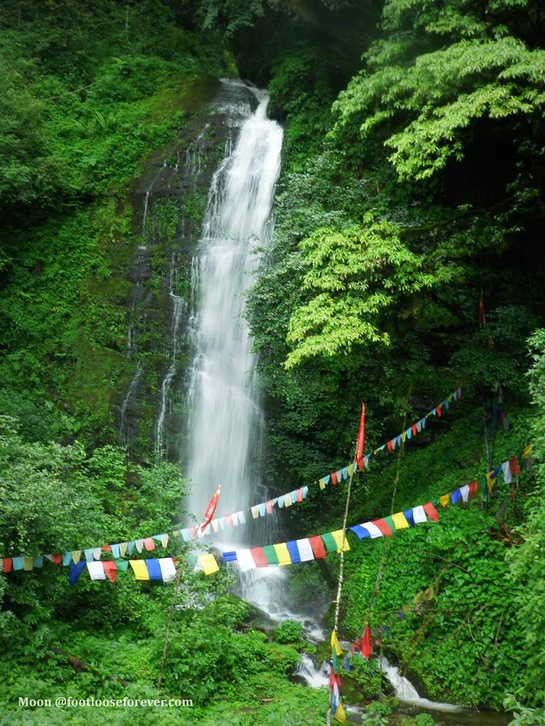 waterfalls, nature, stream