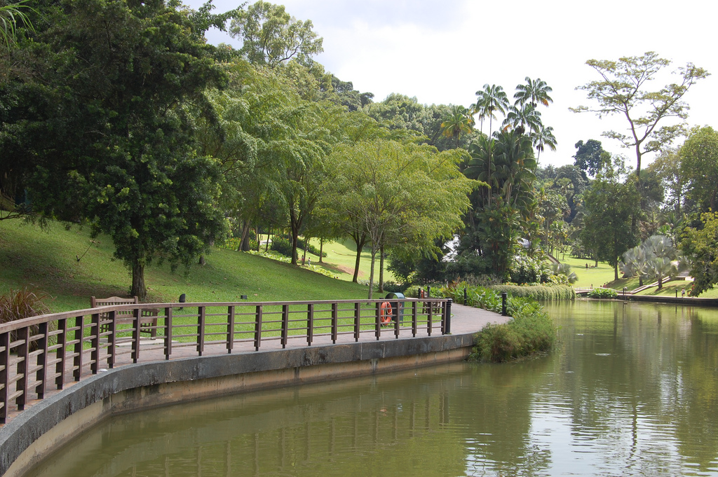 Singapore botanic garden, singapore walking tours