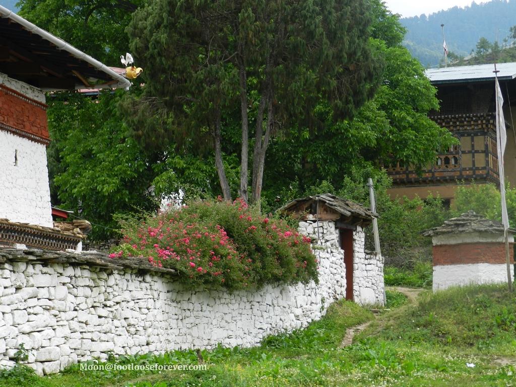 kichu monastery premises, paro, bhutan