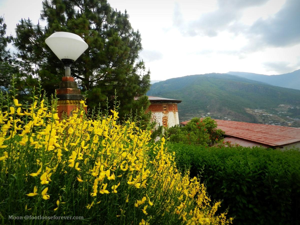 Paro, Bhutan, nature