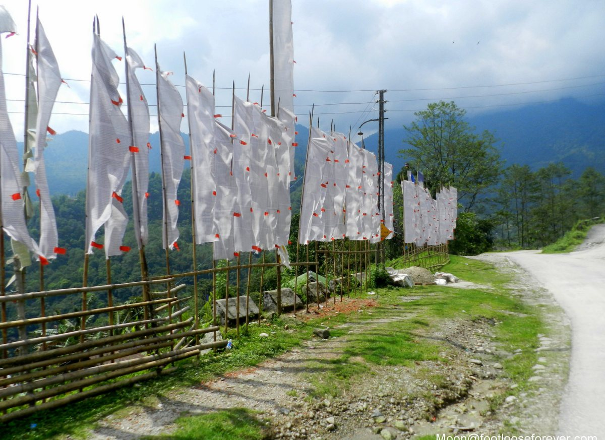 prayer flags, gangtok, lachung, sikkim