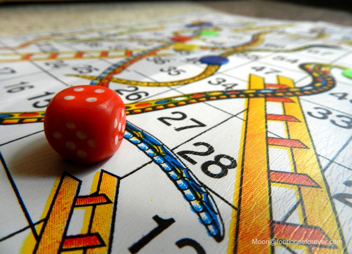 ludu, board game, dice, dp photo challenge