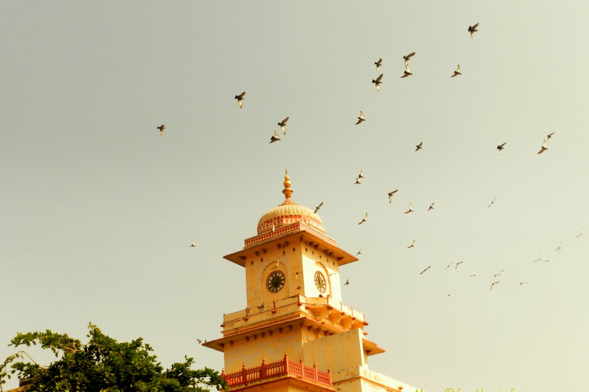 clock tower, Jaipur, rajasthan, architecture